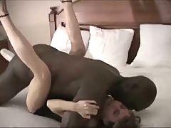 BREEDING BY BLACK COCKS